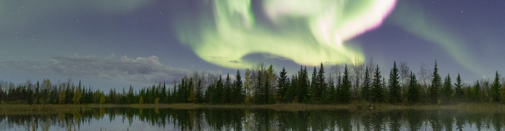 aurora borealis over lake and forest
